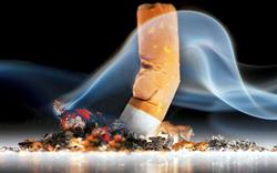 Wien kennt bei Raucher-Wirten keine Gnade