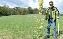 Grüner Spitzenkandidat pflanzte Baum