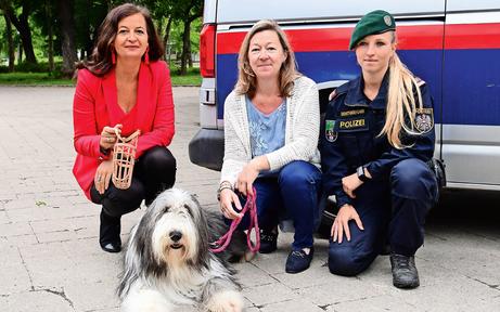 Aktion scharf gegen Hunde und Besitzer