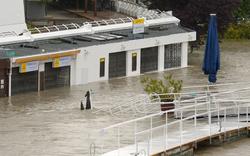 Passanten beklauen überflutete Copa Cagrana