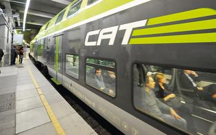 Konkurrenz: Cat gegen Schnellbahn S7