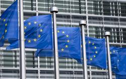 EU-Wahl: Die Karten sind neu gemischt