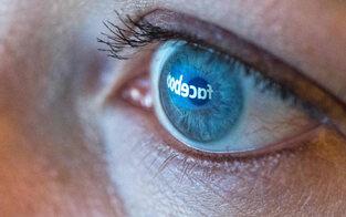 Zensur: Kunstkritiker klagt Facebook
