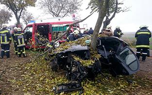 Horror-Crash: Baum spaltet Auto