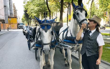 Fiaker-Streit: Wie geht es den Pferden wirklich?