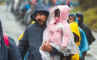 Pröll will um Hälfte weniger Flüchtlinge