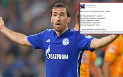 Fuchs: Shitstorm nach Facebook-Posting