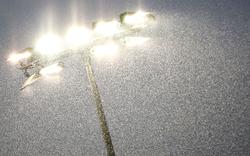 Hartberg gegen WAC wegen Unwetter verschoben
