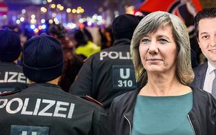 """Grün-blauer Streit um Demo-""""Steinwurf"""""""