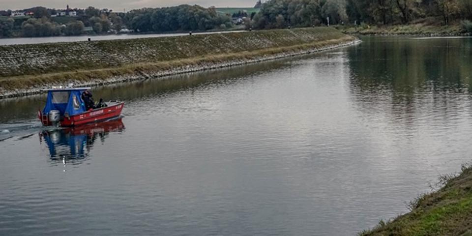 Kalb in Donau Bezirk Melk