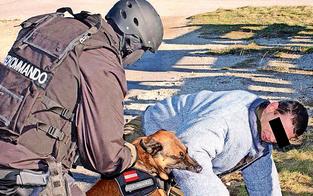 Wieder Attacke von Diensthund