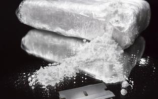 Drogen um 1,4 Mio. € verkauft: 11 Festnahmen
