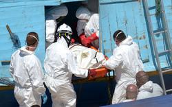 Flüchtlingsdrama vor Lampedusa: 181 Tote