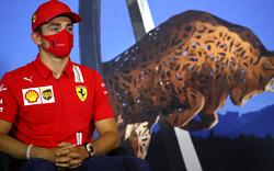 'Blase' verlassen: Ferrari-Pilot Leclerc droht Ärger
