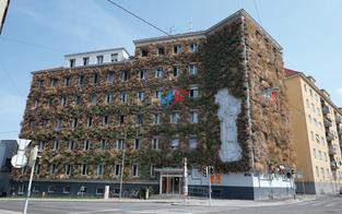 "Wien lacht über Simas ""Grünes Haus"""