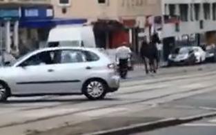 Entlaufenes Pferd galoppiert durch Wien-Favoriten