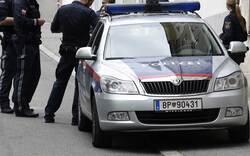 Polizeineisatz: Streit um Katzen eskalierte