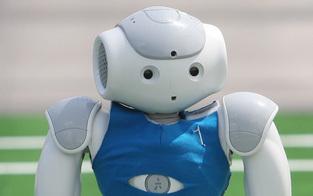 """Roboter brauchen mehr """"Hausverstand"""""""