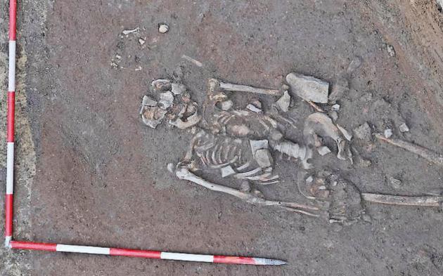 skelett1.png