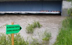 Steiermark: Alle Bilder vom Hochwasser