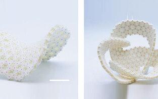 Flaches Gitter faltet sich zu 3D-Objekt