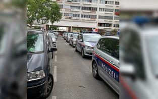 WEGA-Einsatz in Wien: Mieter bedrohte drei Pfleger