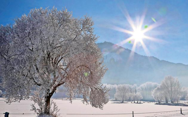 winterlandschaftzellamseeze.jpg