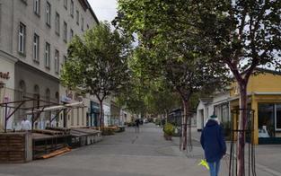 Yppenplatz: 275.000 € für lediglich neun Bäume