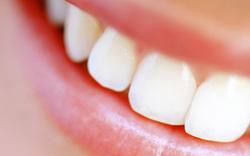 Forscher züchten Zähne aus Urin