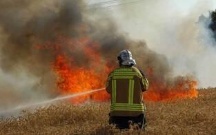 Hitzewelle: Feuerwalzen bedrohen das Land